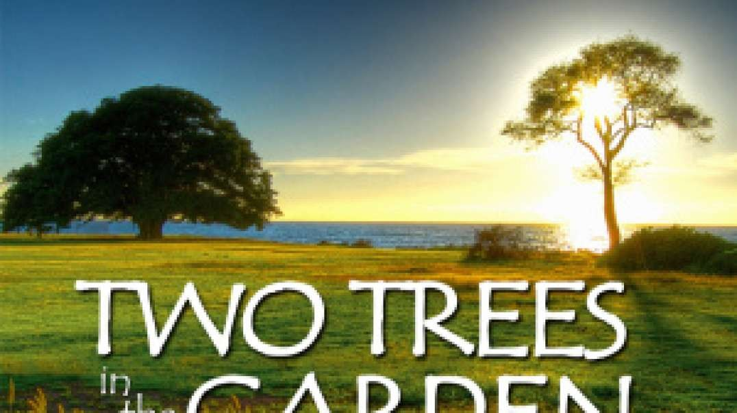 two_trees_part_2