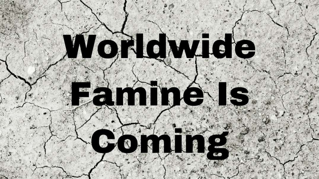 The Coming Famine~ 3rd and 4th Seal of Revelation Study