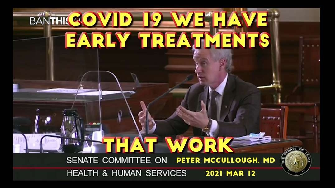 2021 MAR 12 Dr McCullough Testifies at TX HHS COVID 19 we have working Early Treatments that work
