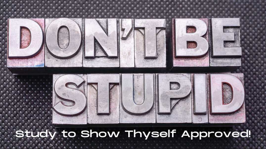 The Bible on: Morons, Fools, Stupid People, & Ignorant Blockheads: Study to Show Thyself Approve